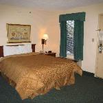 Comfort Inn Marietta, Room 208