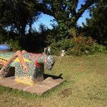 Las Cabanas de Apaneca grounds