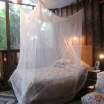 the inside with insect net (use it)