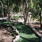 Landscape - Barcelo Maya Colonial Photo