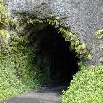 tunnel we go thru
