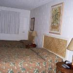 Our Room king & twin bed