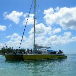 Tiami Catamaran Sailing Cruises