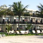 Palm Tree Court