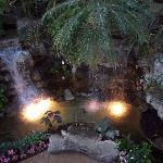 Gaylord Opryland Resort ( Look But Don't Stay)