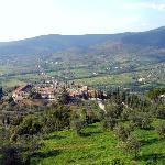 Cortona landscape