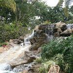 Waterfall at Safari Park Hotel
