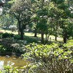 Garden at Safari Park Hotel