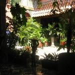 Hotel Los Balcones De Leon Photo