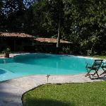 Fish shaped pool