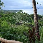 Lapa Rios Ecolodge Osa Peninsula Foto