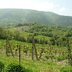 Beautiful Umbrian views