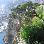 Cliff view of Exotic Garden of Monte Carlo