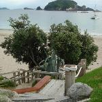 Hahei Oceanfront Foto