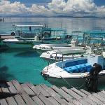 SWV Dive Center