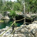 Ponderosa Cenote 2007