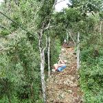 Discovery Jungle Park Photo