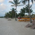 Canoes & kayaks available free of charge