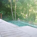 Plunge pool 101