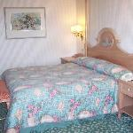 Std room with a Queen bed