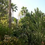 le jardin de l'hotel
