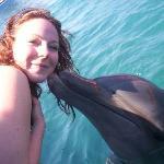 Delfiniti Photo