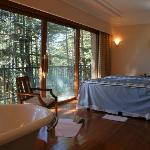Treatment Room over Himalayan Cedar Forest