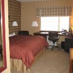 Regular Room (1 King )