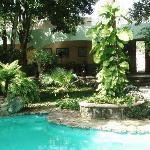 Casa Quetzal Courtyard 2