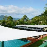 The view over the pool's shade sail