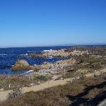 Asilomar State Beach Photo