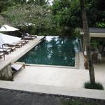 Secluded swimming pool by rice padis
