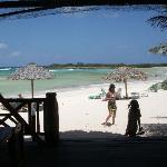 from beach rest. & bar