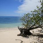 Desroches Island Foto
