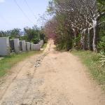 Great Escape driveway