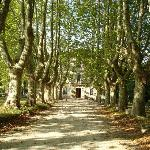 Main driveway leading to the Chateau