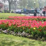 Gardens near the theatre (April)