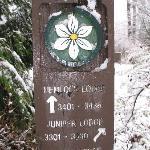 Yosemite lodge names & Building numbers