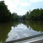 Stunning view on river safari
