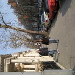 Tree lined street, just outside the John Howard Hotel