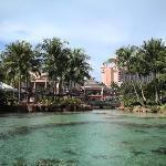 Foto de Marine Habitat at Atlantis