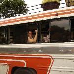 'Chicken Bus'