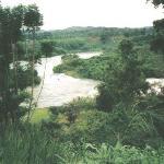 A must see. Bujagali Falls, Jinja
