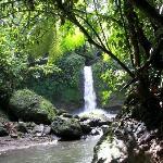 Hernandez Waterfall