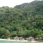 Resort/rainforest