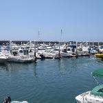 Los Gigantes Harbour