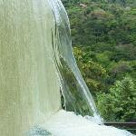 The Gaia Pool