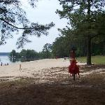 Jordan Lake State Recreation Area Foto