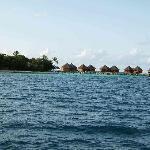 Foto de Mirihi Island Resort