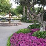 Fountain outside dining pavillion
